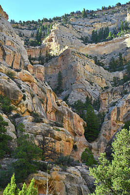 Photograph - Dinosaur National Monument Echo Park by Ray Mathis