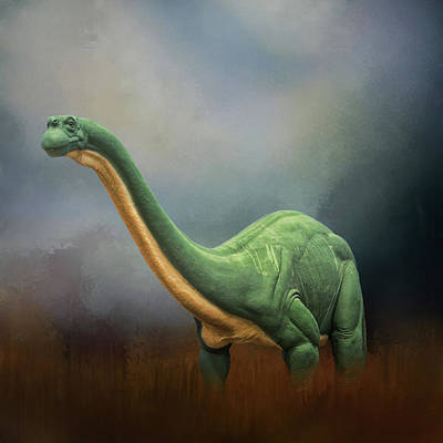 Photograph - Dinosaur Valley State Park by David and Carol Kelly