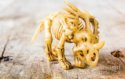 Mammal Wall Art - Photograph - Dinosaurs At The Toy Museum  by Jorgo Photography - Wall Art Gallery