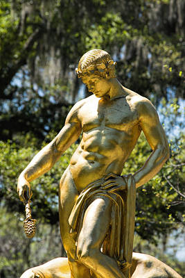 Photograph - Dionysus by Ed Waldrop