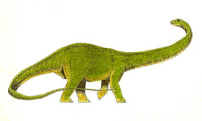 Dinosaur Wall Art - Painting - Diplodocus by Michael Vigliotti
