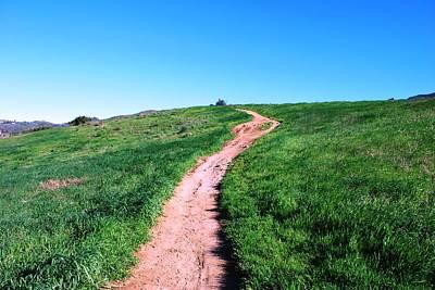 Photograph - Dirt Path Through Fields by Matt Harang