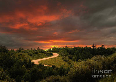 Photograph - Dirt Road Sunset by Lena Auxier