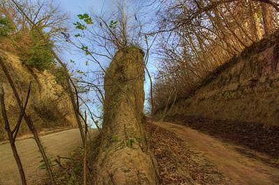 Photograph - Dirt Roads - Loess Hills - Iowa by Nikolyn McDonald