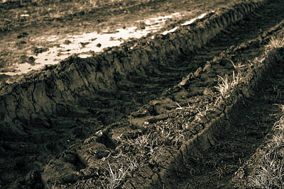 Photograph - Dirt Track by Stewart Scott