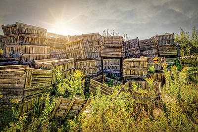 Photograph - Discarded Apple Crates by Bob Orsillo