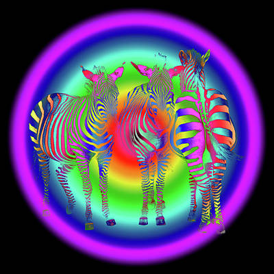 Photograph - Disco Zebra Pop Art by Gill Billington