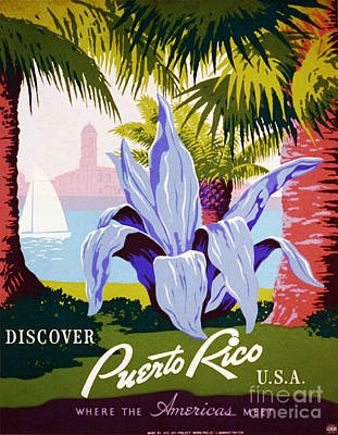 Puerto Rico Painting - Discover Puerto Rico by Celestial Images