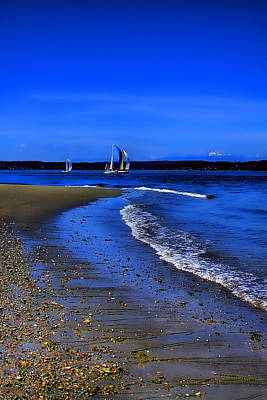 Discovery Park North Beach Art Print by David Patterson