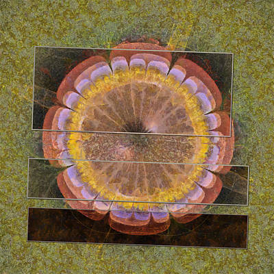 Response Mixed Media - Disli Pipe Dream Flowers  Id 16163-141218-44391 by S Lurk