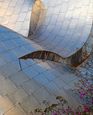 Photograph - Disney Concert Hall by Amelia Racca