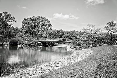 Photograph - Distant Bridge by Vanessa Valdes