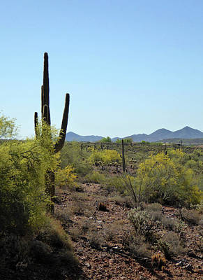 Art Print featuring the photograph Distant Hills by Gordon Beck