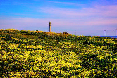 Photograph - Distant Lighthouse by Garry Gay