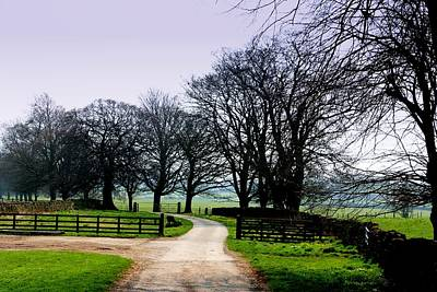 Photograph - Distant Pathways by Andrew Mcdermott