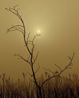 Waiting For The Sun Photograph - Distant Sun by Odd Jeppesen