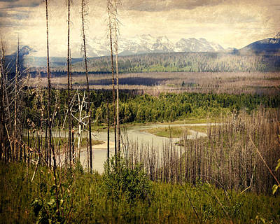 Photograph - Distant View by Marty Koch