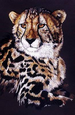 Cheetah Drawing - Distinctive by Barbara Keith