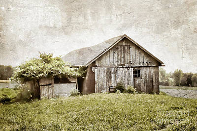 Nikki Vig Royalty-Free and Rights-Managed Images - Distressed Barn Print by Nikki Vig
