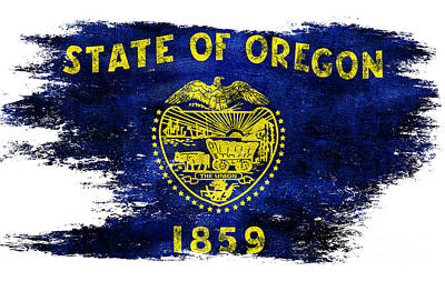 Oregon State Photograph - Distressed Oregon Flag by Jon Neidert
