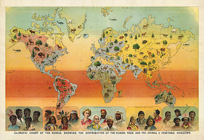 Drawing - Distribution Of The Human Race - Ethnographic Chart - Historic Chart - Old Atlas - Climatic Chart by Studio Grafiikka