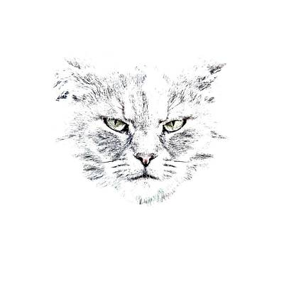 Shirt Photograph - Disturbed Cat by Everet Regal