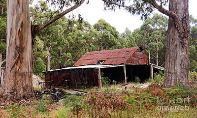 Photograph - Disused Shed  by Lexa Harpell