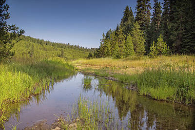 Photograph - Ditch Creek by Kunal Mehra