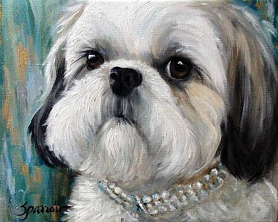 Shih Tzu Painting - Diva by Mary Sparrow