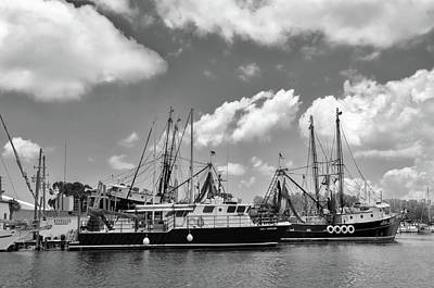 Photograph - Dive Boats For Sponges by Carolyn Dalessandro
