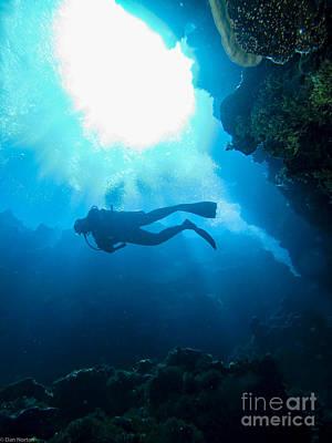 Studio Grafika Zodiac - Diver At Pakin Atoll by Dan Norton