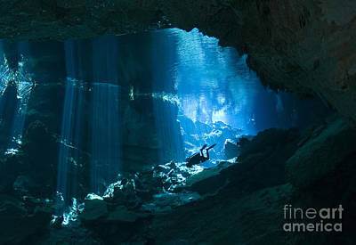 Cenote Photograph - Diver Enters The Cavern System N by Karen Doody