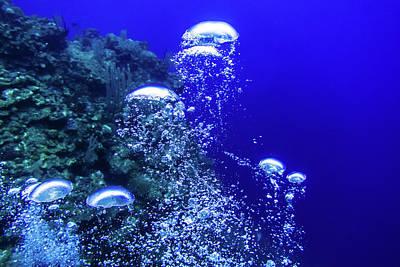Underwater Photograph - Diver's Bubbles by Jim Murphy