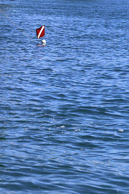 Photograph - Diver's Buoy by Mary Bedy