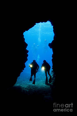 Divers Silhouetted Through Reef Art Print by Dave Fleetham - Printscapes