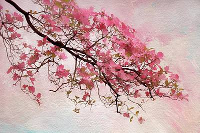 Soft Digital Art - Divine Dogwood  by Jessica Jenney
