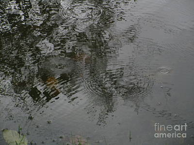 Photograph - Divine Patterns Part One by Marie Neder