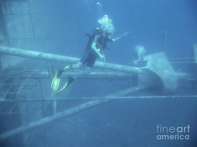 Photograph - Diving On A Wreck by Patricia Hofmeester