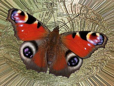 Photograph - Divinity Gold Peacock Butterfly by Richard Thomas