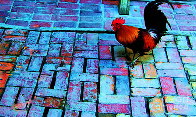 Rooster Photograph - Dixie Chicken by Debbi Granruth