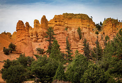 Photograph - Dixie National Forest Mts. by Kathleen Scanlan