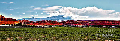 Photograph - Dixie Red Rocks by Stephen Mitchell