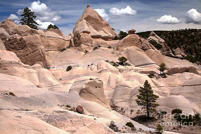 Photograph - Dixie White Tent Rock Canyon by Adam Jewell