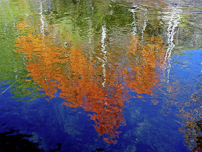 Photograph - Dm6475 Dc Autumn Reflection by Ed Cooper Photography