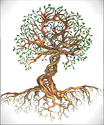 Drawing - Dna Tree Of Life by Joanna Aud