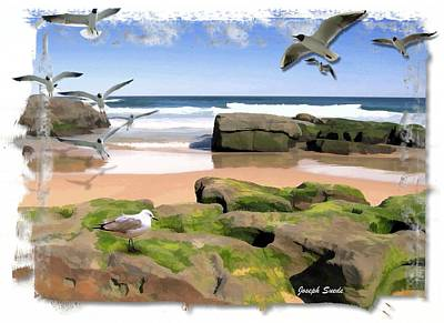 Photograph - Do-00046 Birdie Beach by Digital Oil