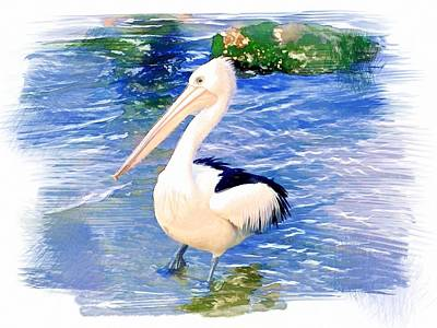 Do-00088 Pelican Art Print by Digital Oil
