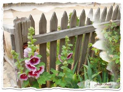 Photograph - Do-00099 Fence-flowers by Digital Oil