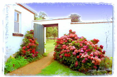 Photograph - Do-00101 Garden In Port Arthur by Digital Oil