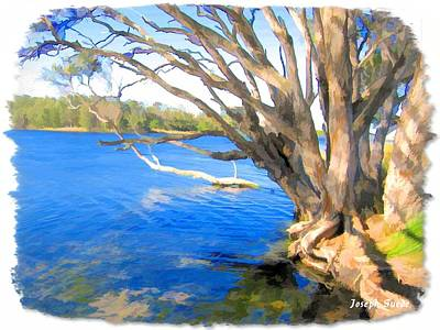 Photograph - Do-00105 Avoca by Digital Oil